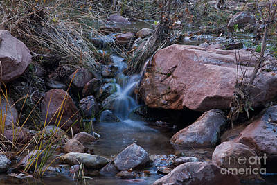 Photograph - Pine Creek by Fred Stearns