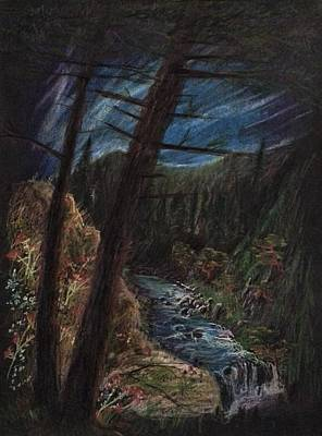 Drawing - Pine Forest Brook  by Alan Schwartz