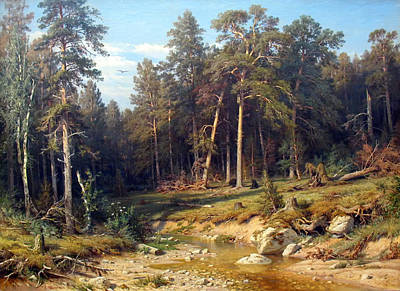 Beautiful Creek Painting - Pine Forest by Mountain Dreams