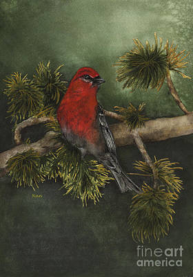 Painting - Pine Grosbeak by Nan Wright
