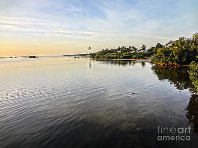 Photograph - Pine Island Florida Sunset Dec 31st 2012 by Ginette Callaway