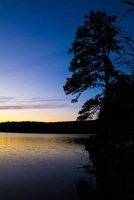 Photograph - Pine On Cedar Lake by Nathan Hillis