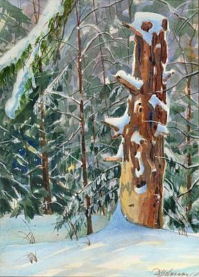 Pine Sentinel Art Print