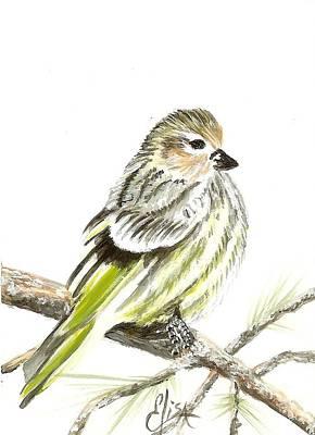 Pine Siskin Finch Art Print by Elisa Gabrielli