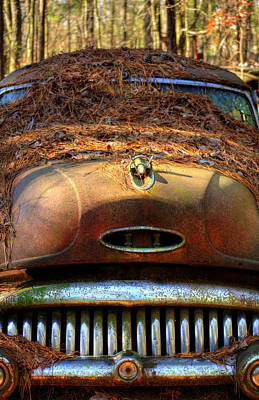 Pine Needles Photograph - Pine Straw On Buick by Greg Mimbs