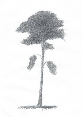 Painting - Pine Tree Drawing Number Five by Alan Daysh