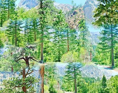 Photograph - Pine Trees Collage by Marilyn Diaz