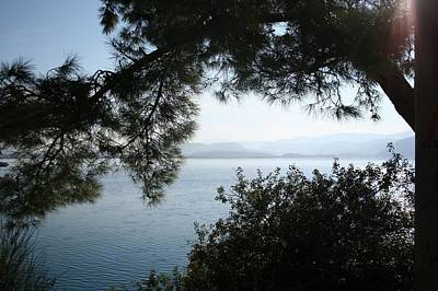 Print featuring the photograph Pine Trees Overhanging The Aegean Sea by Tracey Harrington-Simpson