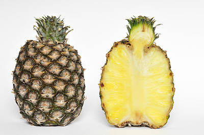 Vitamin-containing Photograph - Pineapple Ananas Comosus by Matthias Hauser