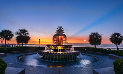 Art Print featuring the photograph Pineapple Dawn by RC Pics