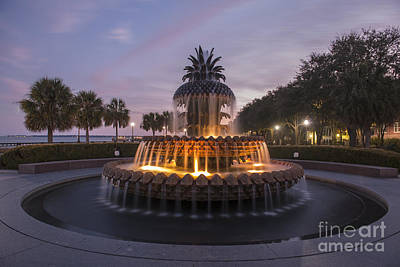 Photograph - Pineapple Fountain At Night by Dale Powell