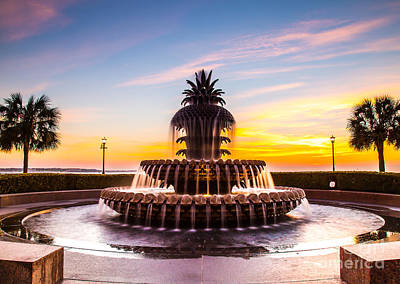 Photograph - Pineapple Fountain Charleston Sc by Donnie Whitaker