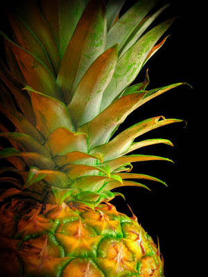 Photograph - Pineapple I by David and Carol Kelly