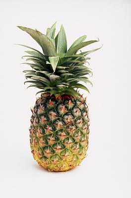 Fruits Photograph - Pineapple by Ron Nickel