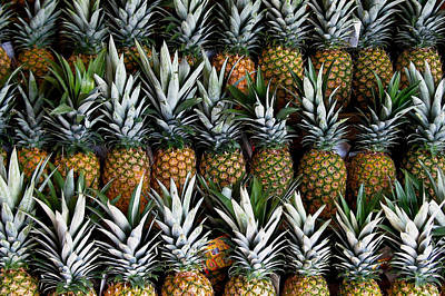 Photograph - Pineapples  by Gia Marie Houck