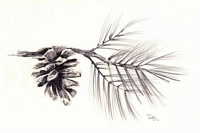 Pine Cones Drawing - Pinecrest Pinecone by David Hohmann