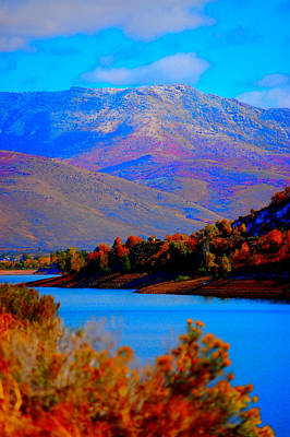 Photograph - Pineview by Holly Blunkall