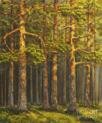 Nature Oil Painting - Pinewood by Veikko Suikkanen