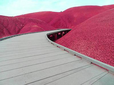 Walkway Mixed Media - Pink by Alex Hanley
