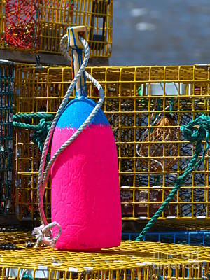 Photograph - Pink And Blue Lobster Buoy On Traps by Christine Stack