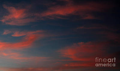 Photograph - Pink And Blue Skys by Amanda Collins