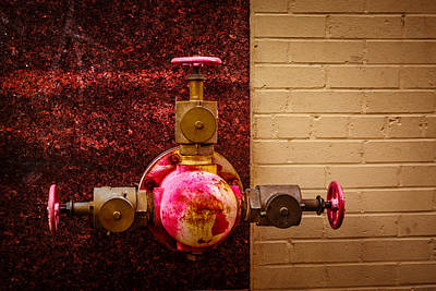 Photograph - Pink And Rusted by Melinda Ledsome
