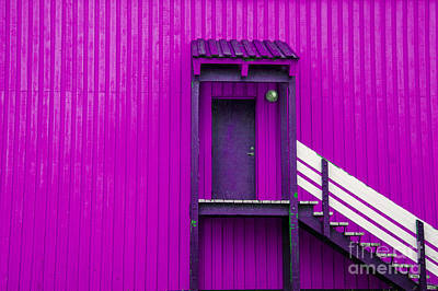 Photograph - Pink And White by Rick Bragan