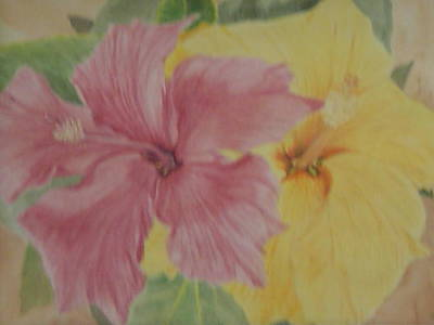 Art Print featuring the painting Pink And Yellow Hibiscus by Hilda and Jose Garrancho