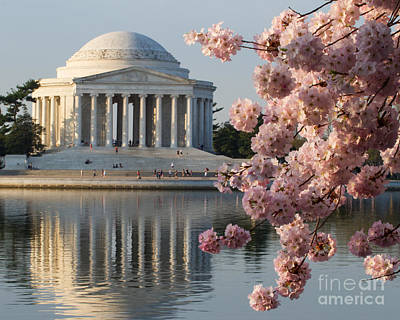 Photograph - Pink Blossom Jefferson by Dale Nelson