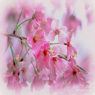 Photograph - Pink Blossoms Water Color - Duvet Sized by Scott Hervieux