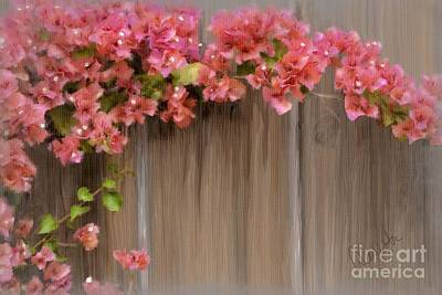 Mixed Media - Pink Bougainvillea by Andrea Auletta