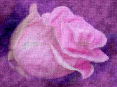 Mixed Media - Pink Canvas Rose by Dennis Buckman