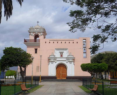 Photograph - Pink Cathedral by Lew Davis