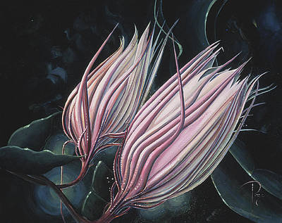 Painting - Pink Cereus by Donna Page
