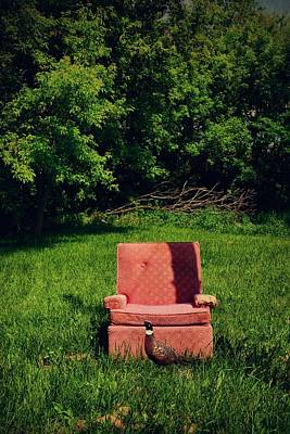 Photograph - Pink Chair Pheasant by Emily Stauring