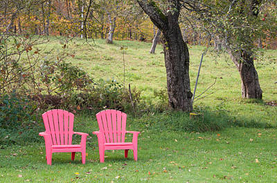 Photograph - Pink Chairs by Paul Miller