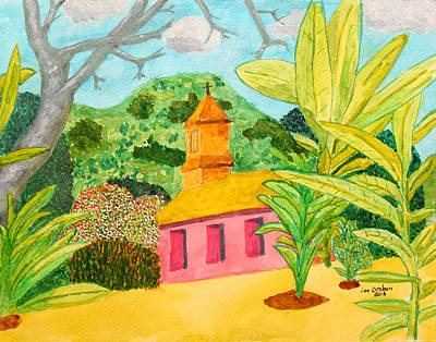 Photograph - Pink Church In A Tropical Forest by John Orsbun