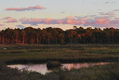 Photograph - Pink Clouds by Terry DeLuco