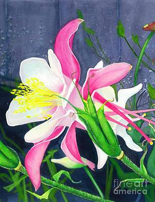 Painting - Pink Columbine by Barbara Jewell