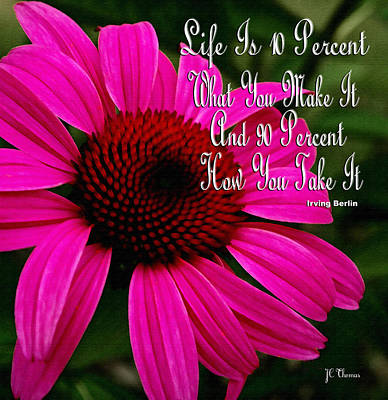Pink Coneflower Art Print