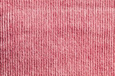 Pink Corduroy Art Print by Tom Gowanlock