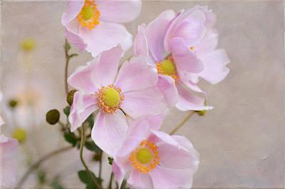 Photograph - Pink Cornucopia by Fraida Gutovich