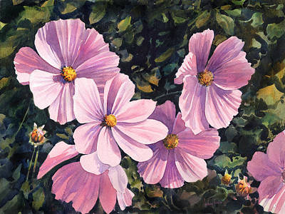 Pink Cosmos Art Print by Anthony Forster