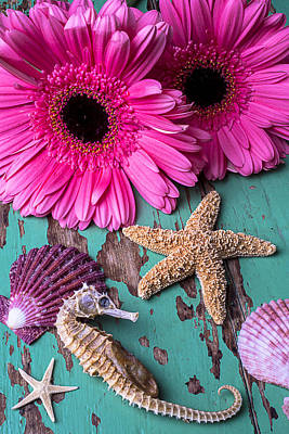 Chip Photograph - Pink Daises And Seahorse by Garry Gay
