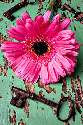 Gerbera Daisy Photograph - Pink Daisy And Old Keys by Garry Gay