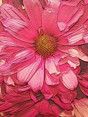 Daisy Painting - Pink Daisy Impression by Erica  Darknell