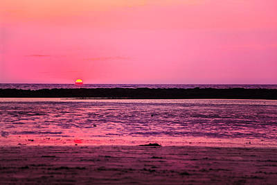 Photograph - Pink Dawn At Manori Bel by Kantilal Patel