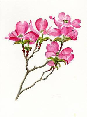 Pink Flower Painting - Pink Dogwood Array by Sharon Freeman