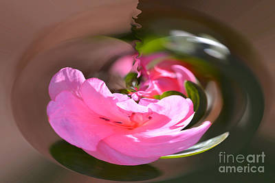 Photograph - Pink Drop by Elvis Vaughn