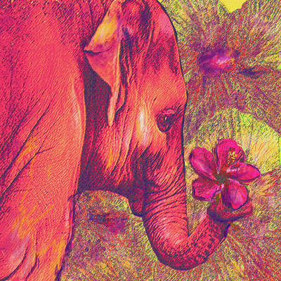 Digital Art - Pink Elephant by Jane Schnetlage